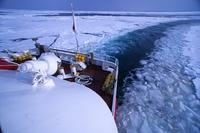 オホーツク海の美しい流氷 - 北国の花鳥風月