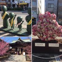 桜新町●サザエさんの街 - ミニチュアブルテリア ダージと一緒3