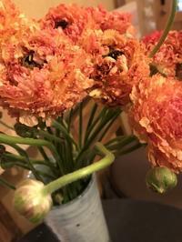 月始めのこだわり・・・「季節の草花でお迎えしています・・・」編 - 納屋Cafe 岡山