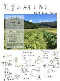 黒豆で作るお味噌のワークショップ - photo 丘の上 通信