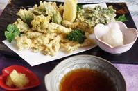 ■【続・1本の山ウドで4品の料理】 ④山ウド穂先と山菜の天婦羅 - 「料理と趣味の部屋」