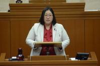 日本共産党区議団を代表して一般質問を行いました(1) - わいわい桐子