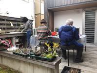盆栽教室 - 桂建設の日々ブログ
