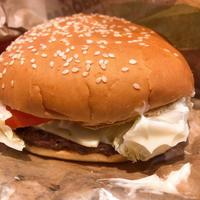 バーガーキングのハンバーガーは熱いうちに食べたいの。 - あれも食べたい、これも食べたい!EX