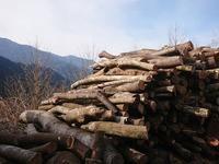 炭づくり炭焼き - お山の宿 みちつじ
