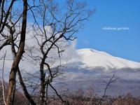 幻の雪景色 - 永楽屋ガーデン    自然を愛する スローライフな庭造り