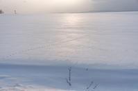 雪原の足跡 - inside out