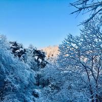 春を遮る雪 - 山谷彷徨