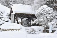 久しぶりの雪☆彡 - DAIGOの記憶