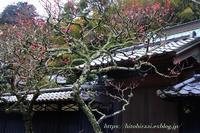 再び、東慶寺へ - 暮らしを紡ぐ