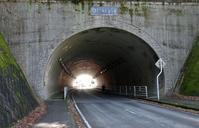 今日のウォーキングは「さくらトンネル」コース - 東金、折々の風景