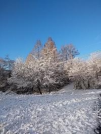 3月最初の定休日 - 八ヶ岳 サムズ キッチン