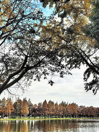水辺の秋の色 - 風の香に誘われて 風景のふぉと缶