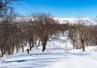 2019/2/24飛騨 ヤブコギスノー衆「有家ヶ原」 - 流雲 蒼穹 風に吹かれて