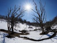 2019/3/5 早春の雪原は美しくも静寂なり八丁平 - 流雲 蒼穹 風に吹かれて