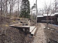 """春待ちの庭の """" スノードロップ  """" - 永楽屋ガーデン    自然を愛する スローライフな庭造り"""