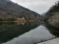 2019年3月6日間瀬湖 - バクバク!ヘラブナ釣行記
