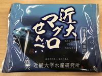 近大マグロせんべい - よく飲むオバチャン☆本日のメニュー