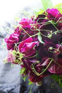 ドギュンの色と組み合わせで春満喫 - お花に囲まれて