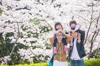 桜撮影会2019v - maru*photo   カメラマン 住本 真理子