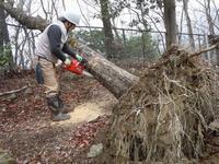 防災という観点からも森林ボランティアを考えてみたい - 大屋地爵士のJAZZYな生活