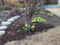 初春の庭しごと芝生のお手入れとTM9のデメリット - シンプルで心地いい暮らし