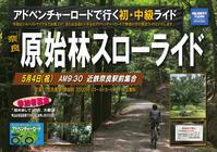 5/4(祝)『奈良 原始林スローライド』アドベンチャーロードライド‼️ - ショップイベントの案内 シルベストサイクル