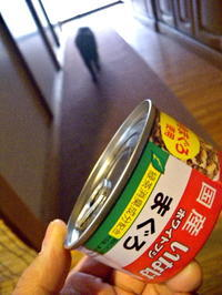パトと缶詰 - スズキヨシカズ幻燈画室