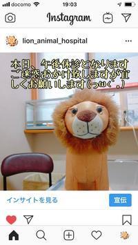 インスタグラム - アイマグブログ― らいおん動物病院 らいおん先生