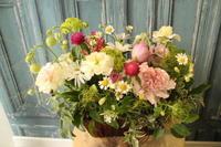 お供えの花春らしい優しい花で - 北赤羽花屋ソレイユの日々の花
