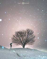 Last Snow - o'night