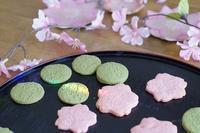 桜のクッキー🌸('ω') - ほっこりしましょ。。