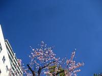 春の北風-中川製作所- - 美術・中川製作所