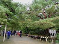 金沢そぞろ歩き・庭園探訪:兼六園 - 日本庭園的生活
