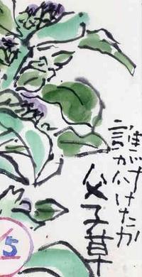 チチコグサハハコグサ - 日々是絵手紙