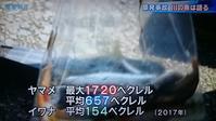 TBS報道特集69 - 風に吹かれてすっ飛んで ノノ(ノ`Д´)ノ ネタ帳