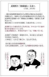 これからどうなる、半島の文金コンビ東京カラス - 東京カラスの国会白昼夢