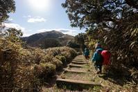 西伊豆の海と富士山を眺めながら歩く「達磨山」あの頂をめざせ! - Full of LIFE