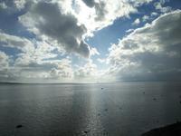 マングローブと海の景色  ◎石垣島の旅⑱◎ - Emily  diary