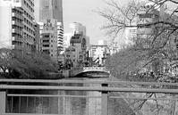 河畔(その6) - そぞろ歩きの記憶