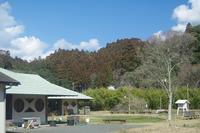 春だ、花粉だ、新しい命だ - 千葉県いすみ環境と文化のさとセンター