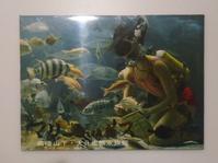 大分生態水族館の絵葉書 - Coron's  style