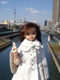 空から見えたもの - mitsukiのお気楽大作戦