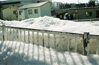 ザラメ雪と雪融けの奇観と確定申告 - 照片画廊