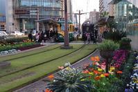 藤田八束の鉄道写真@鹿児島市内電車、路面電車が花で覆われています。綺麗な花に囲まれた路面電車 - 藤田八束の日記