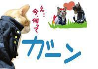 第2ボタン - ぎんネコ☆はうす