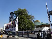TOKYO GUITER JAMBOREE 2019 - マイニチ★コバッケン