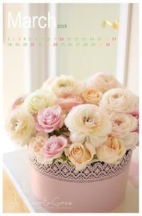 3月のカレンダー「12年目」 - Bloom&Grow通信「芦屋から 季節の色と香りに包まれた贅沢な毎日」