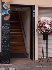 日本酒と自然派ワインとテキーラの店 エルダボ(EL DABO)~3月11日グランドオープン~ - 日々の贈り物(私の宇都宮生活)