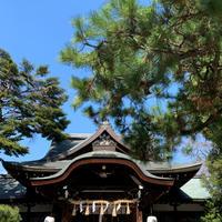 京都 京都 熊野神社 - Gallery I